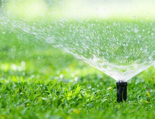 5 Things to Know Before Installing an Irrigation System