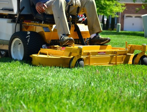 What Home Lawn Maintenance Services Do I Need?