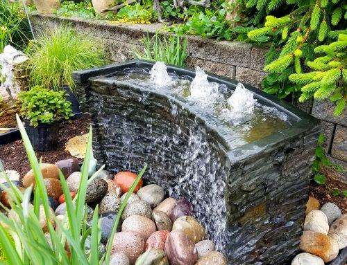 5 Landscaping Enhancements To Make This Year