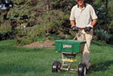 Lawn Seeding & Aeration